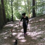 Waldspaziergang mit unseren Gästen